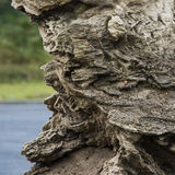 Beautiful natural rock. At sunny day Royalty Free Stock Photo