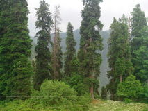 Beautiful natural scenary of Pakistan. Nature has beautifully painted some master pieces of art Stock Photography