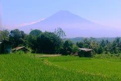 Beautiful natural scenery stock photos