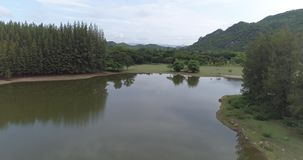 Aerial view of tropical green forest with river. Beautiful natural scenery of river in Asia tropical green forest with mountains in background, aerial view drone stock video footage