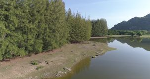 Aerial view of tropical green forest with river. Beautiful natural scenery of river in Asia tropical green forest with mountains in background, aerial view drone stock video