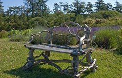 Beautiful Natural Seat With Lavender. This beautiful natural seat is sitting in the middle of a peaceful garden setting with lavender in the background Stock Image