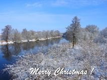 Merry Christmas card done using trees and river , Lithuania stock photo