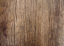 Beautiful natural texture of bark wood plank use as nature woode Royalty Free Stock Images