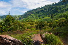 Beautiful Natural View at Khlong Yai, Thailand. Beautiful Natural View at Khlong Yai province, Thailand Stock Image
