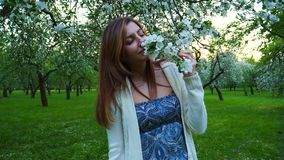Beautiful natural woman in a blooming apple orchard, smelling the flower. stock footage