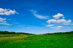 Beautiful Nature. Beautiful green field under the blue skies royalty free stock photos