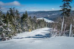 Free Beautiful Nature And Scenery Around Snowshoe Ski Resort In Cass Stock Photography - 116367232