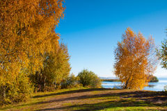 Beautiful nature, autumn. stock photography