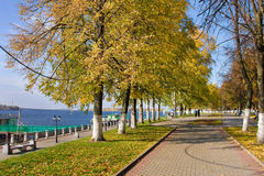 Beautiful nature, autumn in city Stock Photos