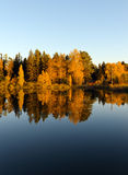 Autumn forest and lake in the fall season Royalty Free Stock Photos