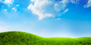 Beautiful nature background with green grass. And sky Royalty Free Stock Image