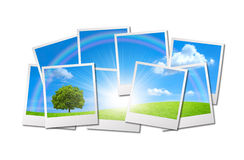 Beautiful Nature Background from many Photos Stock Images