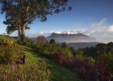 Beautiful nature background sunrise at Doi Luang Chiangdao in Chiangmai stock image