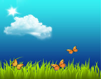 Beautiful Nature Backround. Butterfly Clouds,Sun and Beautiful Nature Backround vector illustration