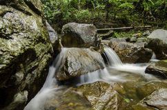 Beautiful nature,cascaded river flowing through Royalty Free Stock Images