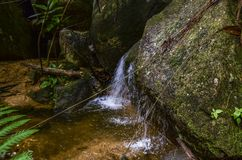 Beautiful in nature, cascading tropical river wet and mossy rock royalty free stock photography