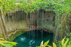 Beautiful nature Cenote Ik Kil in Mexico. Picturesque natural underground lake in Mexico Stock Photo