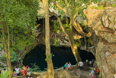 Beautiful nature Cenote Zaci in Mexico. Picturesque natural underground lake in Mexican town Valladolid Stock Image