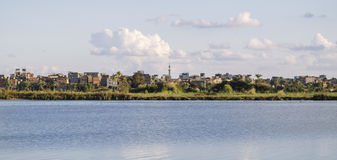 Beautiful nature of the coastline of the Nile river Royalty Free Stock Photography