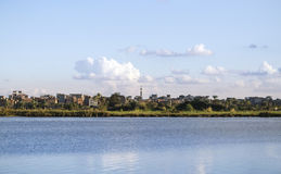 Beautiful nature of the coastline of the Nile river Royalty Free Stock Photo