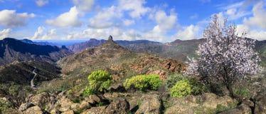 Beautiful nature of Gran Canaria Stock Images