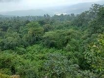 Nature beauti. Beautiful nature in india stock photos