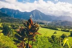 Beautiful nature on the Kauai island, Hawaii, USA. Panoramic view on mountains, rivers, fields and waterfalls royalty free stock photos