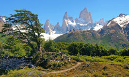 Beautiful nature landscape in Argentina. Beautiful nature landscape with Mt Fitz Roy as seen in Los Glaciares National Park, Patagonia, Argentina royalty free stock photo