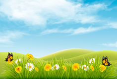 Beautiful nature landscape background with flowers Stock Photos