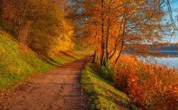 Path near lake, autumn is beautiful