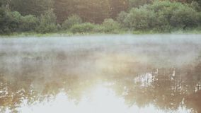 Beautiful nature landscape in the forest. The fog, white smoke over the water, calm lake. stock footage