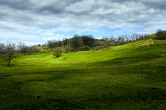 Beautiful nature landscape, green tree hills and blue cloudy sky Stock Images