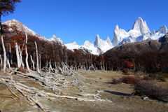 Beautiful nature landscape with Mt. Fitz Roy as seen in Los Glaciares National Park, Patagonia, Argentina Royalty Free Stock Photos