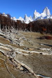 Beautiful nature landscape with Mt. Fitz Roy as seen in Los Glaciares National Park, Patagonia, Argentina Stock Images