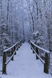 Beautiful details of branches with snow and wooden bridge in Scandinavian winter landscape Royalty Free Stock Image
