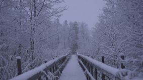 Beautiful nature and landscape video of snowy blue dusk evening in Katrineholm Sweden with wooden bridge stock video footage