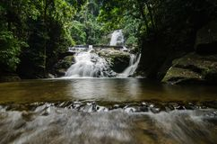waterfall stream surrounded by green tropical green forest Royalty Free Stock Image