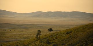 Hills and steppe. Beautiful nature, Mountain landscape, soon sunset, two lonely trees Stock Photography