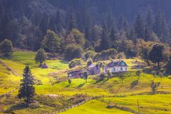 Beautiful nature of the mountains and hill in summer Stock Image