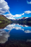 Beautiful Nature Norway. Stock Images