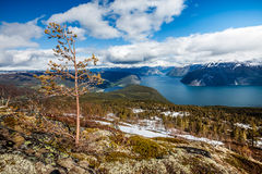 Beautiful Nature Norway - Sognefjorden. Royalty Free Stock Photo
