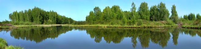 Beautiful nature, panoramic view. River Norochta stock photo