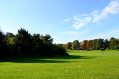 Beautiful nature in the parc Stock Photography