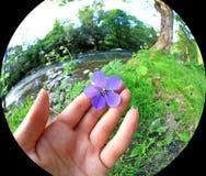 Beautiful nature in region Liptov, Slovakia Stock Photos