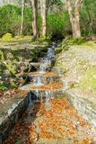 Beautiful nature scene of Kylemore Abbey & Victorian Walled Garden
