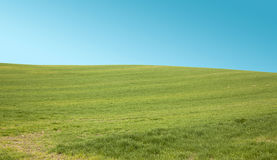Beautiful Nature Scene. Beautiful Landscape green meadow and sky Royalty Free Stock Photos