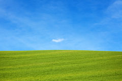 Beautiful Nature Scene. Beautiful Landscape green meadow and sky Royalty Free Stock Photography