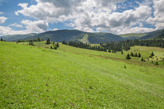 Beautiful nature scenery with green meadow and mountain range Royalty Free Stock Photos