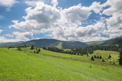 Beautiful nature scenery with green meadow and mountain range Royalty Free Stock Photography